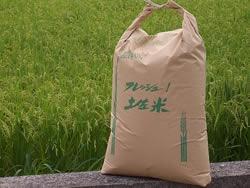 new-rice
